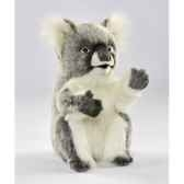 koala anima 6297