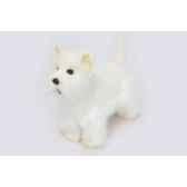 chien westie anima 6307