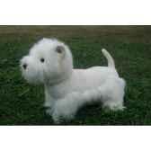 chien westie anima 9018