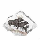 famille d elans mats jonasson 34068