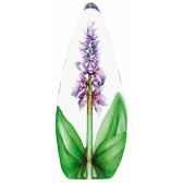 orchidee pourpre mats jonasson 33820