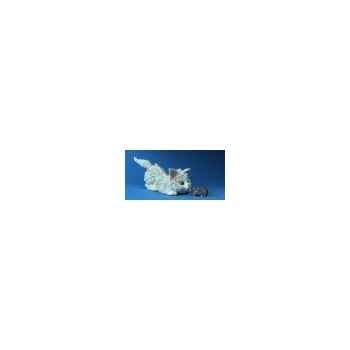 Figurine chat - adriana + cm cocolina   - ca36