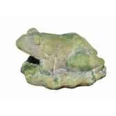 old terra frog sujet grenouille en terre cuite moussee intermas 180723