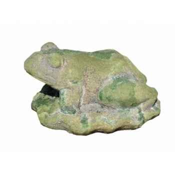 Old terra frog( sujet grenouille en terre cuite moussée) Intermas 180723