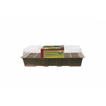 Kit planting (kit de culture) Intermas 160022