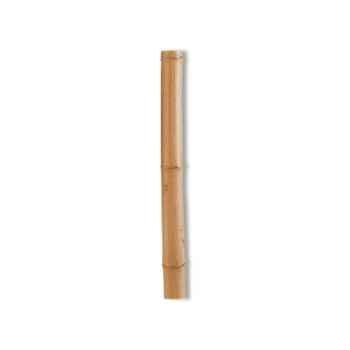 Tuteur bambou deco Intermas 140811