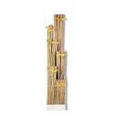 presentoir tuteurs bambou naturecomprend 850 tuteurs 0m60 650 0m90450 1m203 50 1m50250 1m8050 2m1050 inte