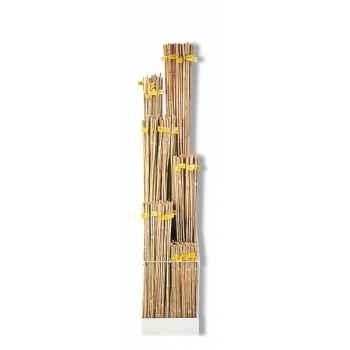Presentoir tuteurs bambou naturel comprend 850 tuteurs:(0m60 *6)*50-(0m90*4)*50-(1m20*3) *50- (1m50*2)*50- 1m80*50- 2m10*50 Inte