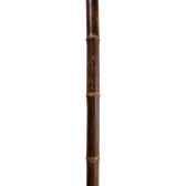 tuteur bambou deco black intermas 2005814