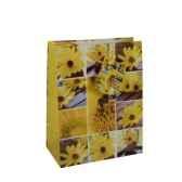 sacs en papier glaces moyens 23 cm x 18 cm x 10 cm flowers papstar 16406