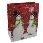 sac en papier glace jumbo 46 cm x 33 cm x 10 cm noepapstar 16462