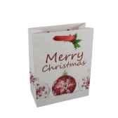 sacs en papier glacesmoyens 26 cm x 20 cm x 10 cm noepapstar 16428