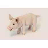 cochon a 4 pattes anima 6290