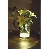bloom vase bloom19