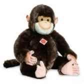 chimpanze hermann 92944 4