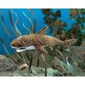 leopard shark folkmanis 2969