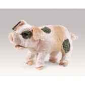 cochon folkmanis 2991