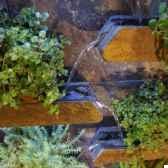 fontaine exterieur interieur cactose 10378mlex