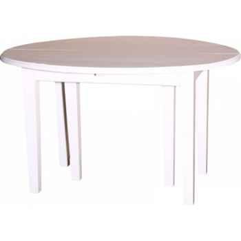 Table ovale 6 portes + 4 allonges de 40cms Antic Line -CD443
