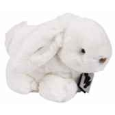 alaska lapin histoire d ours 2413