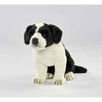 Peluche Border colley bébé chien assis 25cmh Anima -5664