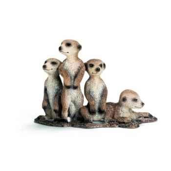 Figurine Jeune suricate Schleich -14388