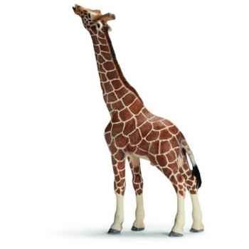 Figurine Girafe mâle mangeant Schleich -14389