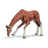 figurine girafe femelle buvant schleich 14390