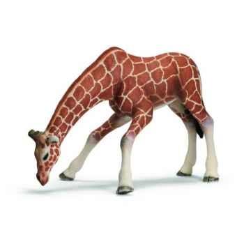 Figurine Girafe femelle buvant Schleich -14390