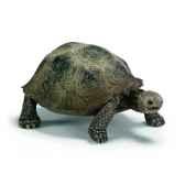 figurine tortue geante schleich 14601