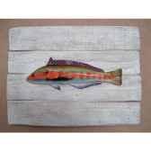 cadre poisson de mer cap vert girelle royale cadr04