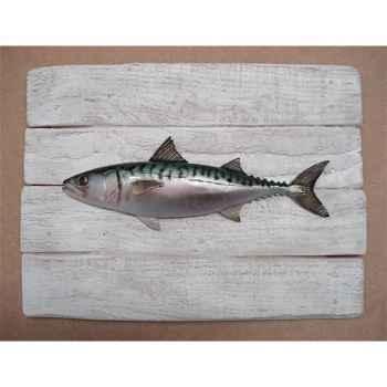Cadre poisson de mer Cap Vert Maquereau -CADR07