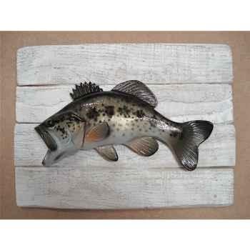 Cadre poisson d\'eau douce Cap Vert Black bass -CADR11