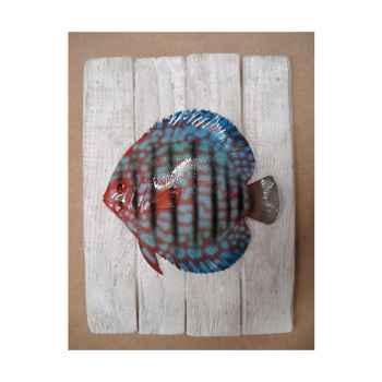 Cadre poisson d\'eau douce Cap Vert Discus -CADR15