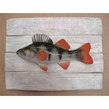 Cadre poisson d\'eau douce Cap Vert Perche -CADR17