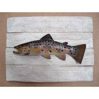 Cadre poisson d\'eau douce Cap Vert Truite fario -CADR19