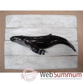 Cadre mammifère marin Cap Vert Baleine à bosses -CADR21