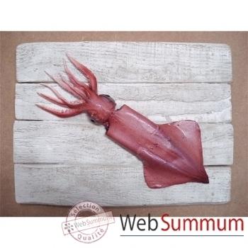 Cadre mammifère marin Cap Vert Calamar -CADR22