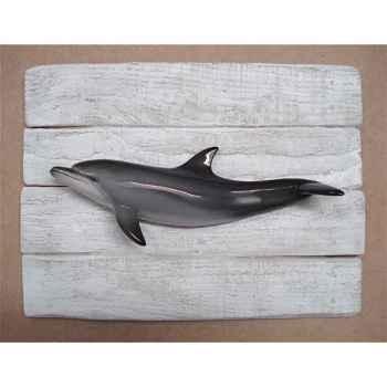 Cadre mammifère marin Cap Vert Dauphin -CADR24