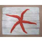 cadre mammifere marin cap vert etoile de mer rouge cadr26