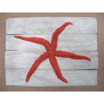 Cadre mammifère marin Cap Vert Étoile de mer rouge -CADR26