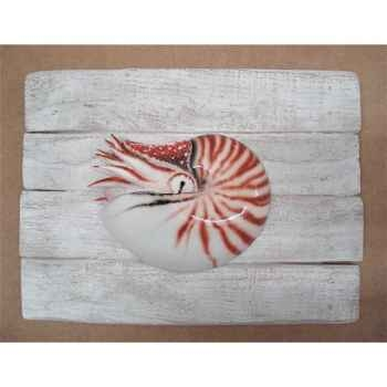 Cadre mammifère marin Cap Vert Nautile -CADR28