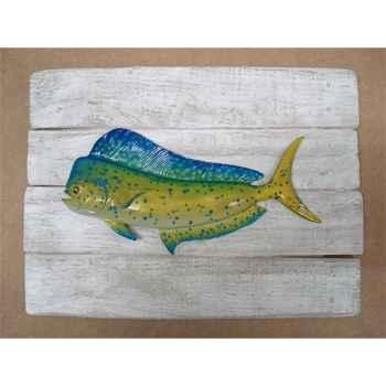 Cadre poisson des tropiques Cap Vert Coryphene -CADR33