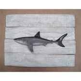 cadre poisson des tropiques cap vert grand requin blanc cadr36