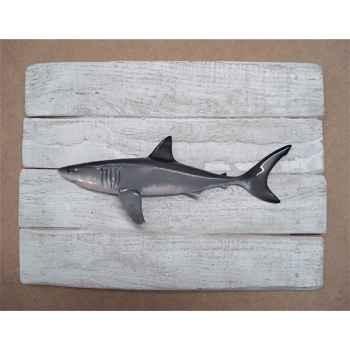 Cadre poisson des tropiques Cap Vert Grand requin blanc -CADR36