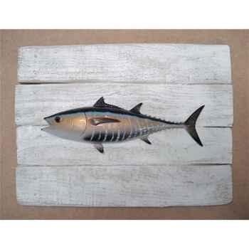 Cadre poisson des tropiques Cap Vert Thon rouge -CADR40