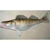 trophee poisson d eau douce cap vert sandre tr09