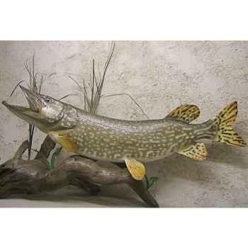 Trophée poisson d\'eau douce Cap Vert Brochet -TRDF05