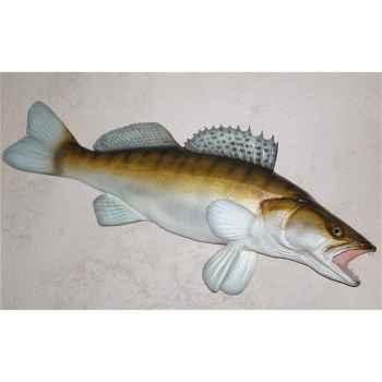 Trophée poisson d\'eau douce Cap Vert Sandre -TRDF09