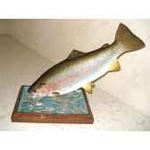 trophee poisson d eau douce cap vert truite arc en cietrdf12